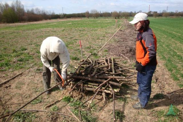 stavění úkrytu pro včely a jiné živočichy