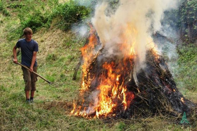 pálení nekvalitní posečené hmoty